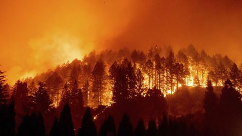 Wildfire expanded on the Silverado Trail in St. Helena, California, burning thousands of acres of land.