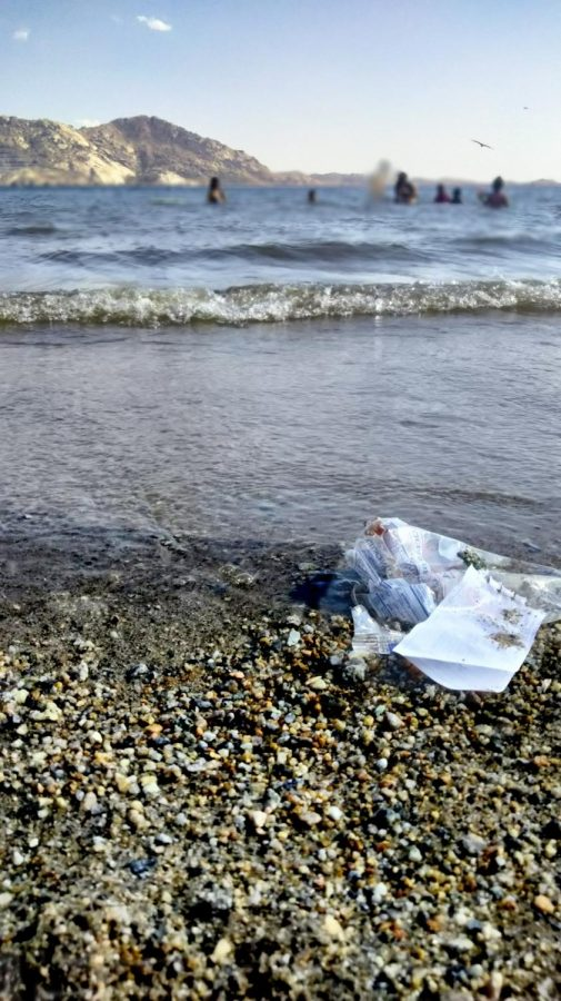 Pollution in the City and its Oceans